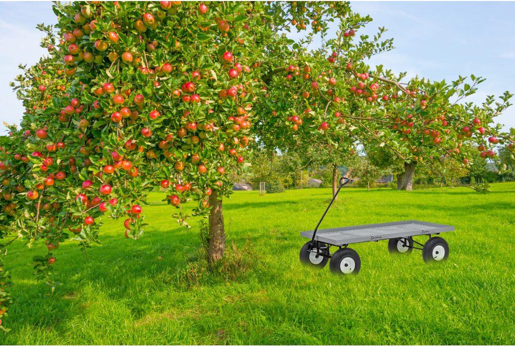 farm wagon orchard 1